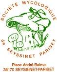 Logo seyssinet