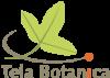 Ltela botanica logo