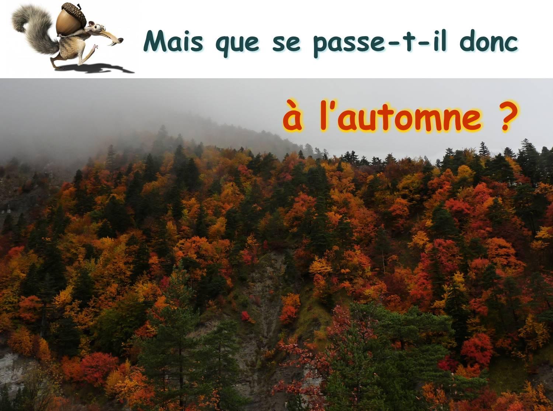 Titre automne
